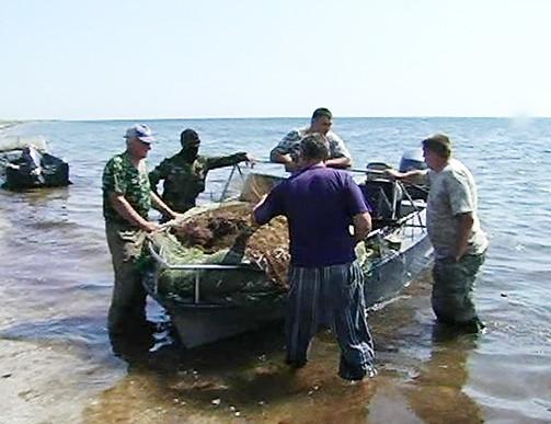 запрет на ловлю рыбы на азовском море
