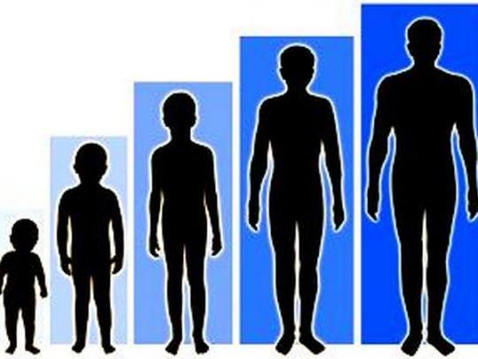 У мальчика 1 годик увеличился половой член