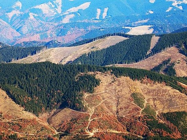 В западных областях объявили о повышенной лавинной опасности - Цензор.НЕТ 8603