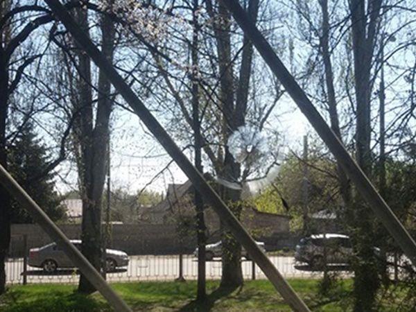 Стоматологическая поликлиника у.маршала казакова