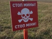 На Донбассе подорвался на мине грузовик— ОБСЕ