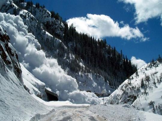 ВГСЧС сообщили, что вКарпатах сошла мокрая лавина