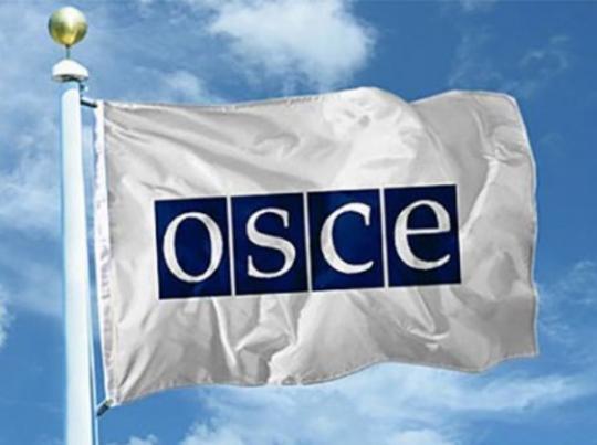 ВОБСЕ нестали насторону Российской Федерации из-за запрета голосования вУкраинском государстве