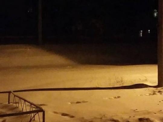 В «ЛНР» назвали вероятные причины выпадения желтого снега