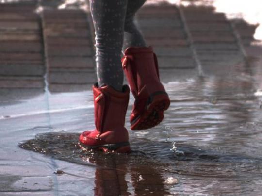 ВСаратовской области синоптики обещают дожди светром