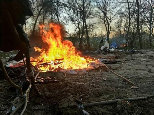 Милиция украинской столицы: Ромы наЛысой горе вырубали деревья иразводили грязь