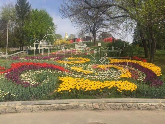 НаПевческом поле вКиеве открылась выставка тюльпанов