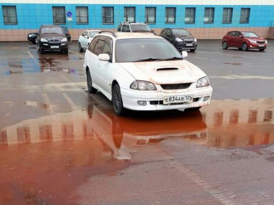 «Предвестник апокалипсиса»: в России прошел «кровавый» дождь (фото, видео)