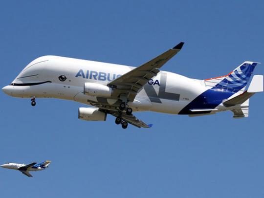 Airbus представил новый самолет в виде кита-белуги: появилось видео первого полета