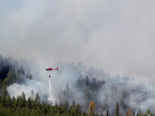 Швеция охвачена лесными пожарами из-за самого жаркого июля в истории