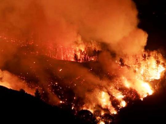 Лесные пожары в Швеции: выгорело 25 тысяч гектаров леса