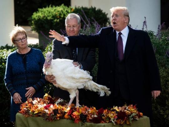 Картинки по запросу трамп день благодарения
