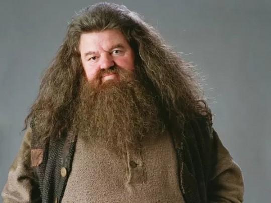 Робби Колтрейн изГарри Поттера оказался винвалидном кресле