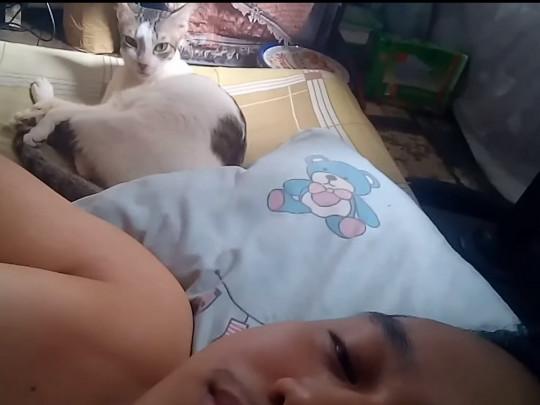 Кошка Мими и Альберт