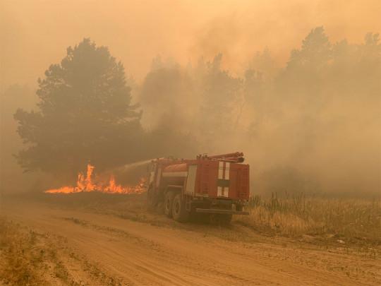 Масштабный лесной пожар на Луганщине: с огнем борются пожарные четырёх областей, местных жителей эвакуируют