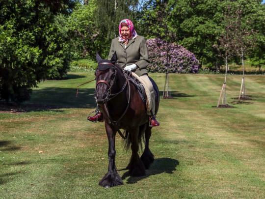 Королева Елизавета верхом на пони