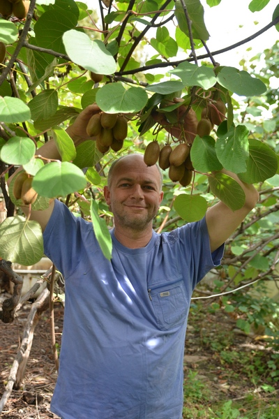 Выращивание в украине 61