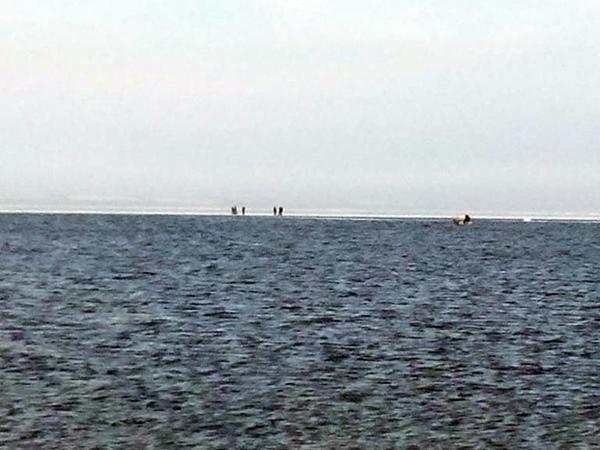 ВЗапорожской области спасли сольда 12 рыбаков