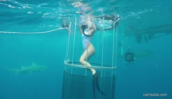 Впроцессе съёмки вводе наполуобнажённую модель напала акула