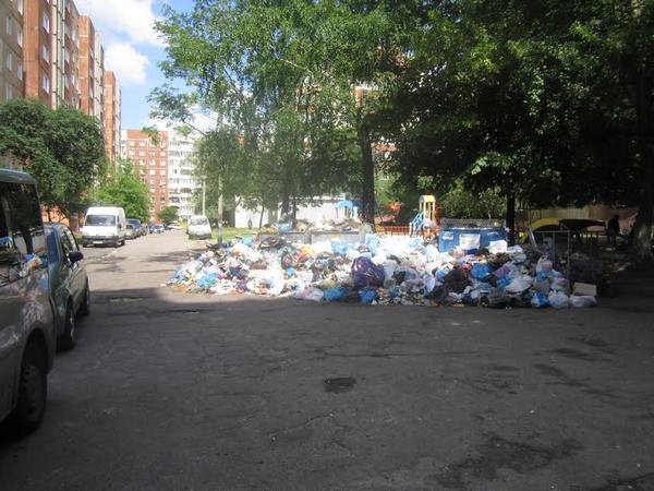 «Враг оккупировал город»: Березюк огласил голодовку из-за мусора воЛьвове