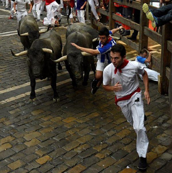 4 человека пострадали вовремя забега быков