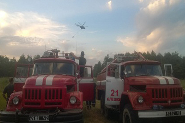 ВОлешковском районе Херсонской области полыхает лес наплощади около 5 га