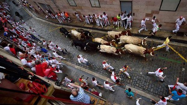 Быки в Испании подняли на рога мужчину и затоптали еще двоих