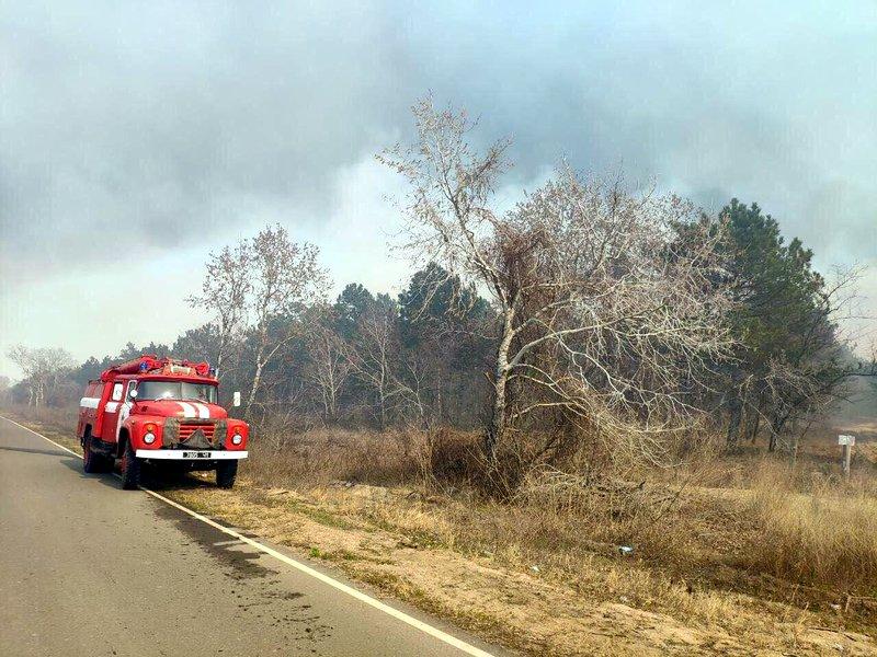 Пылают 30 гектаров: под Одессой снова масштабный пожар