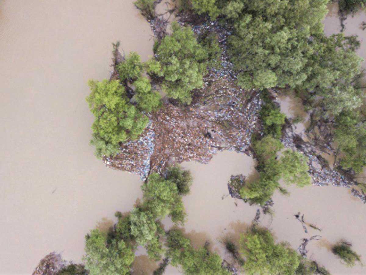 Потоп на Закарпатье сняли с высоты птичьего полета: ужасающие кадры