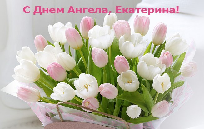 День Екатерины