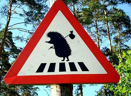В ПДД таких точно нет: в Украине появились необычные дорожные знаки (ФОТО)