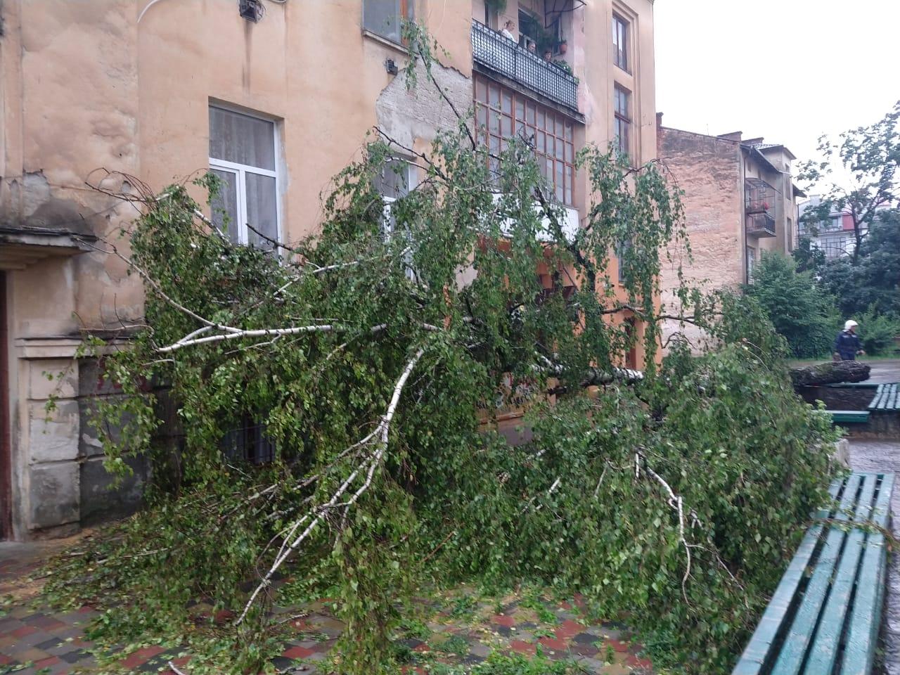 Ивано-Франковск затопило после сильного ливня: в сети показали последствия непогоды